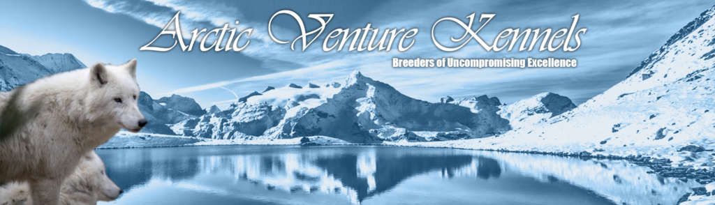 Arctic Venture Kennels